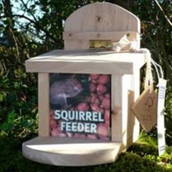 Réserve - Mangeoire pour écureuil
