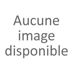 AUXILIAIRES